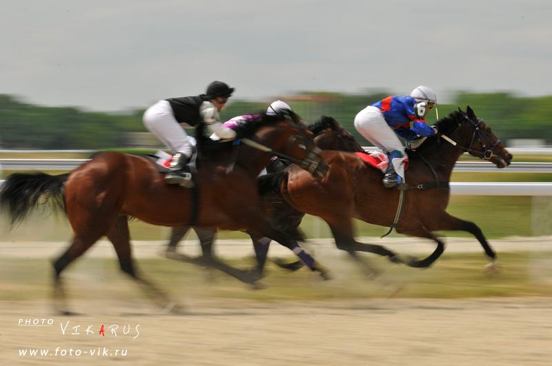 http://www.equestrian.ru/photos/user_photo/2009/85e546e0.jpg