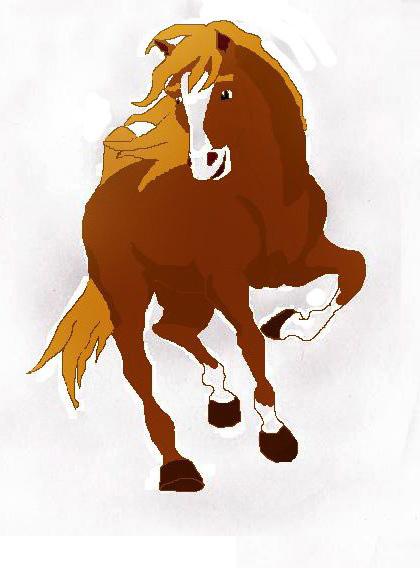 лошадь для фото
