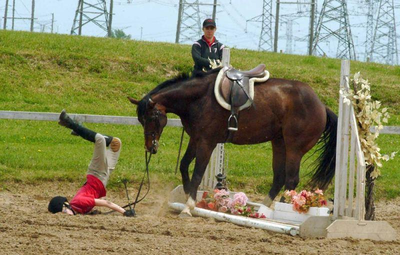 Днем, смешные картинки верховая езда