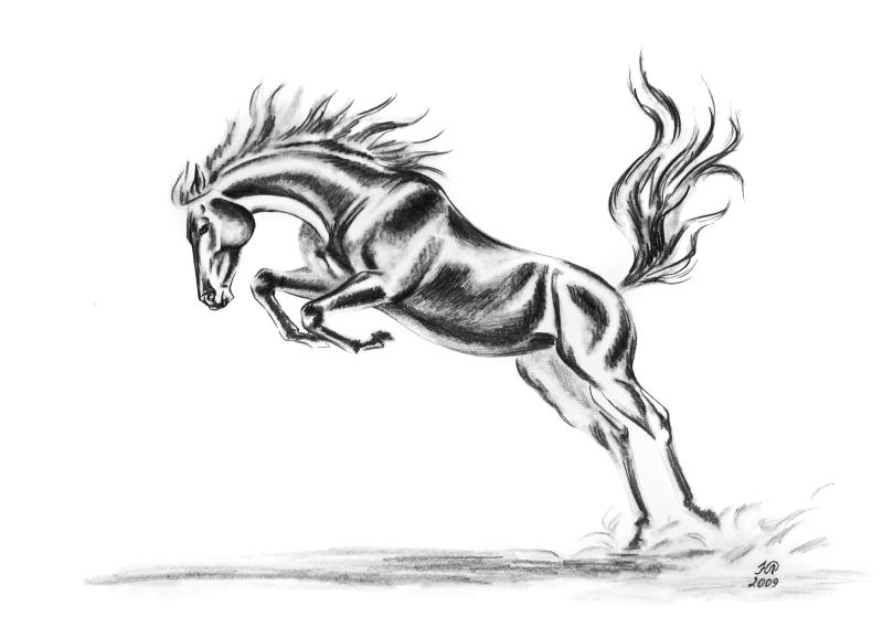 рисунки карандашом спорт: