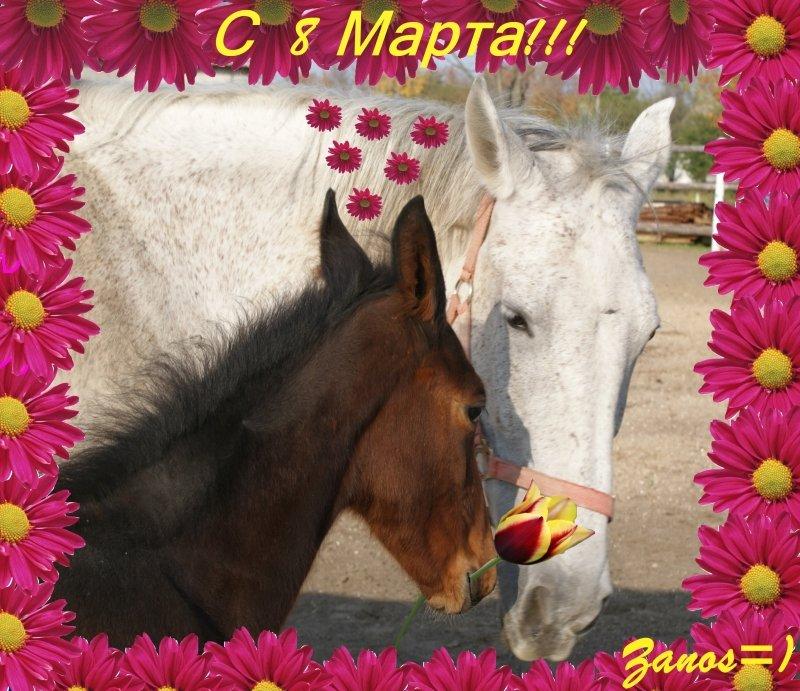 Подарки, открытка с лошадью на 8 марта