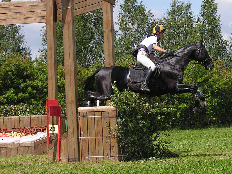 http://www.equestrian.ru/photos/user_photo/2010/d7c56beb.jpg