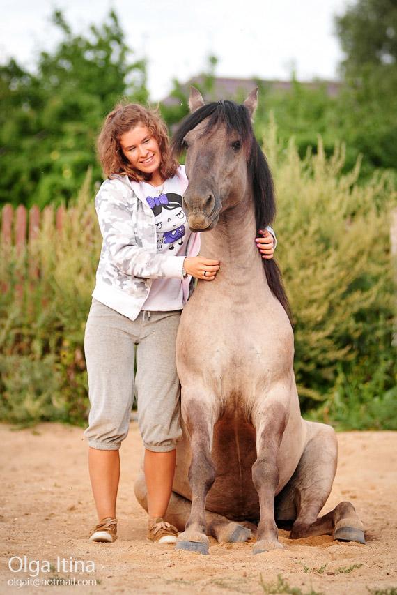 Названия мастей лошадей фото каурый вороной игреневый