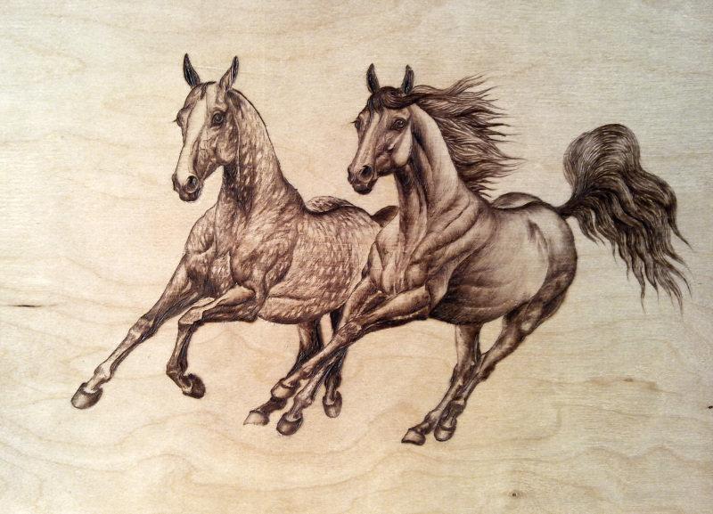 Картинки лошадей для выжигания по дереву