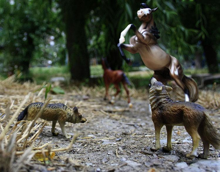 реалистичные животные фигурки фото на улице габардина специально