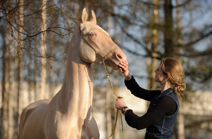 http://www.equestrian.ru/photos/user_photo/2011/c2093d4e.jpg