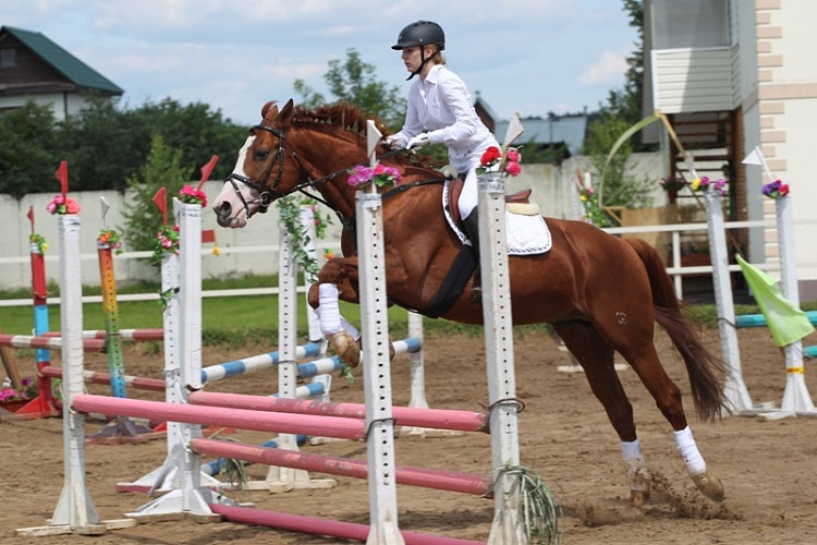http://www.equestrian.ru/photos/user_photo/2012/1830671c.jpg