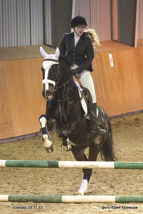 важно юрий кузнецов фото конный спорт тем