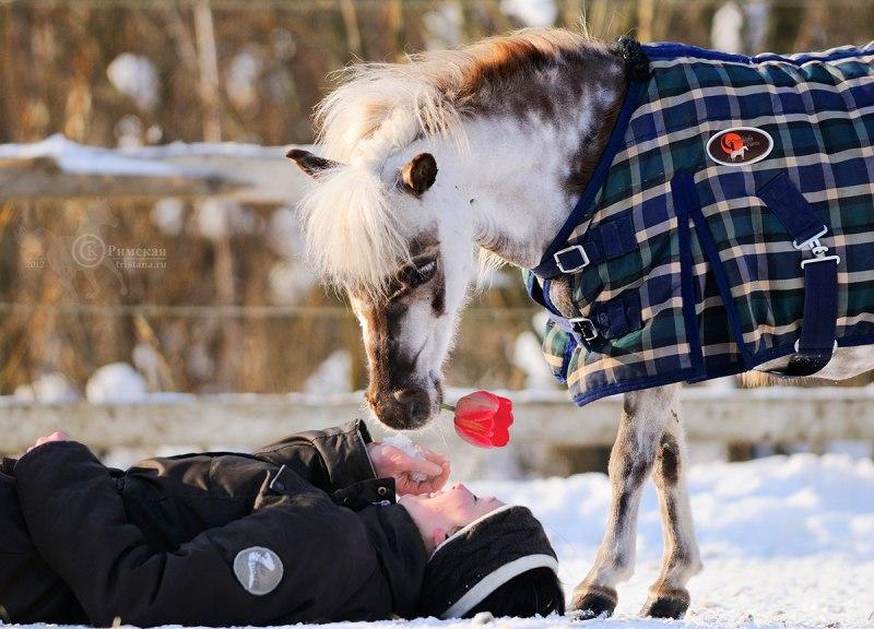 Открытки марта, открытки 8 марта с лошадью