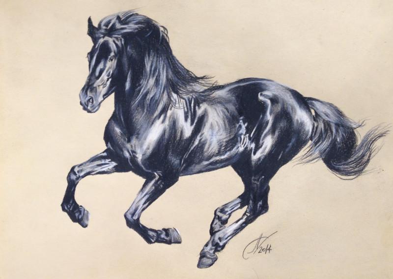 Картинки лошади карандашом цветные