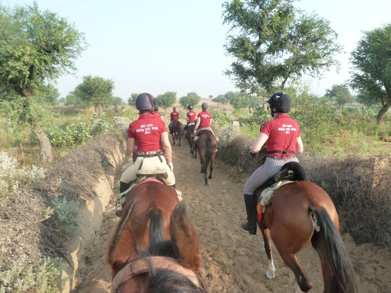 Riding with kings in Rajasthan (India)