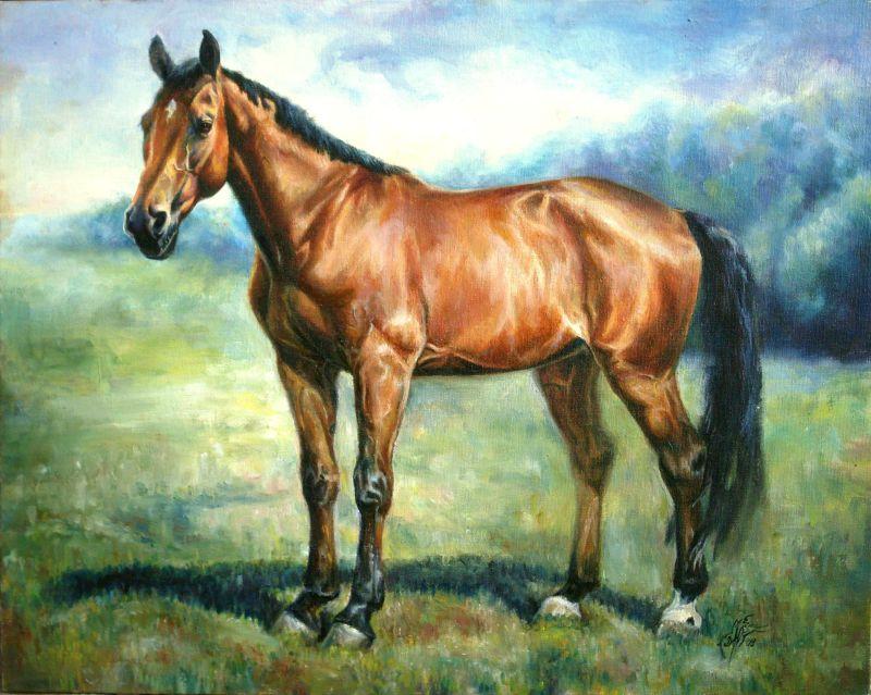 все кони рисунки фото аренду помещение