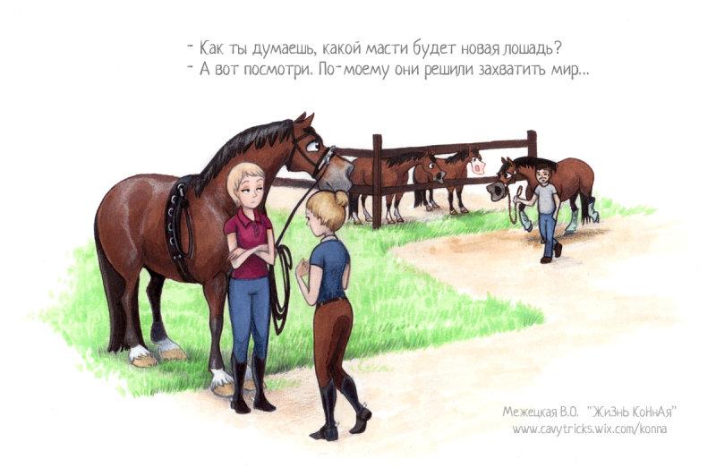 Поздравление конника с днем рождения стихи
