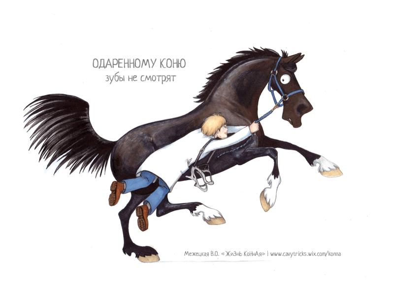 Прикольный открытки с лошадьми, коллектива