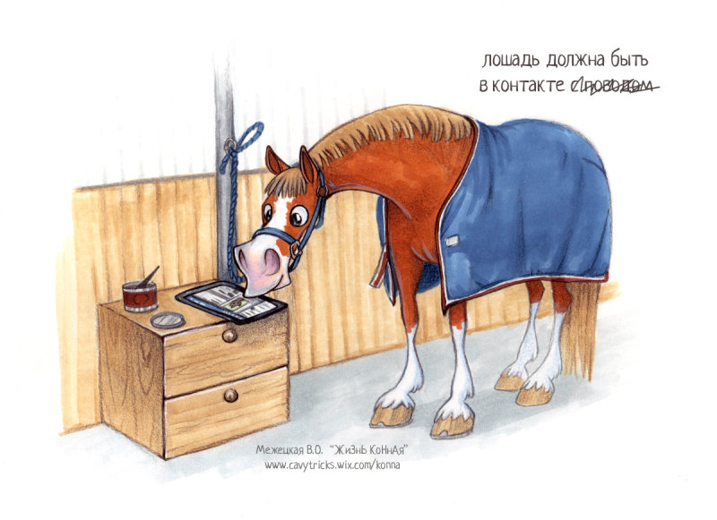 Прикольные картинки про лошадь и работу