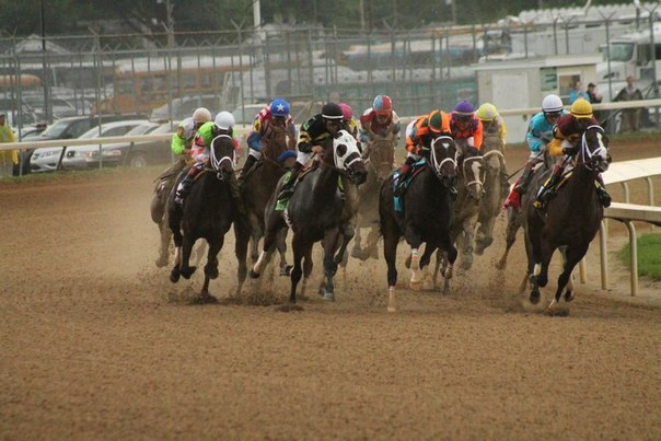 Ипподром Churchill Downs 2012 год, скачка Kentucky Oaks