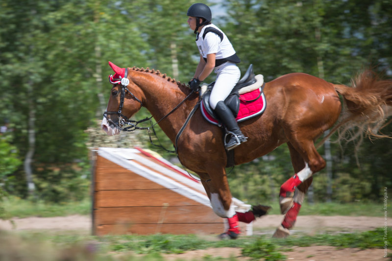 CCI 2* http://moscow.flash-photo.pro/ps4168
