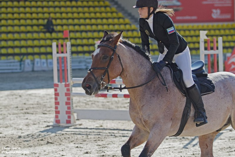 курсов юрий кузнецов фото конный спорт сами