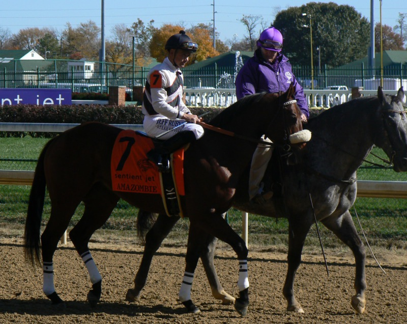 �������� Churchill Downs 2011 ���, ������ Breeders' Cup Sprint