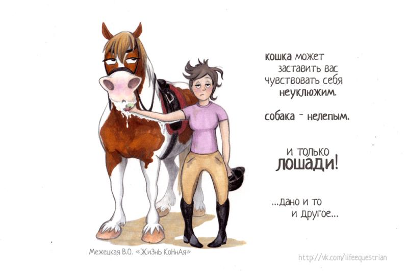 Поздравлению коннику