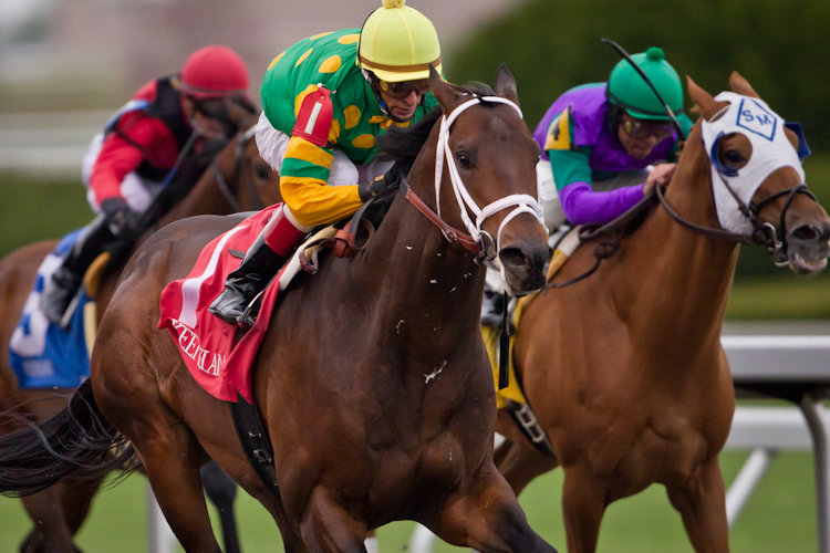�������� Keeneland 2011 ���, ������ Commonwealth