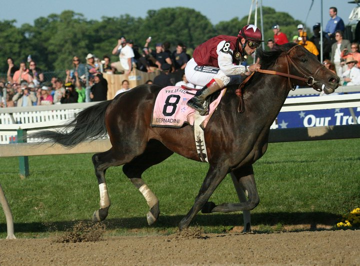 �������� Pimlico 2006 ���, ������ ���� ������� ������ - Preakness Stakes..