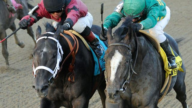 (Cairo Prince � Honor Code) �������� Aqueduct 2013 ���, ������ Remsen Stakes - Gr. 2