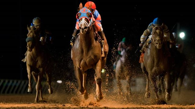 Ипподром Charles Town 2012 год, скачка Charles Town Classic Stakes - Gr. 2