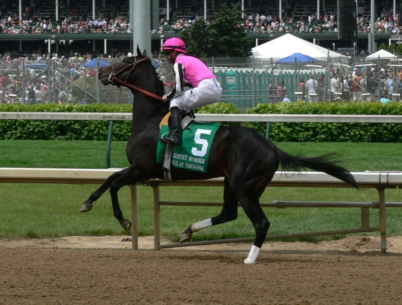 Ипподром Churchill Downs 2010 год, скачка Kentucky Juvenile Stakes