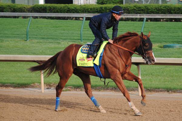 �������� Churchill Downs 2014 ���, ���������� � ������� ����� ������� ������ - Kentucky Derby.