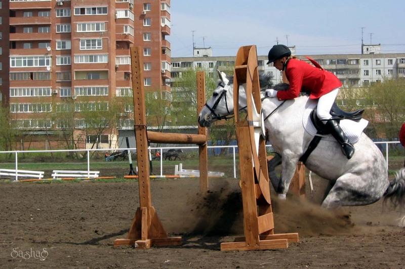 http://www.equestrian.ru/photos/user_photos/a_0740a3.jpg