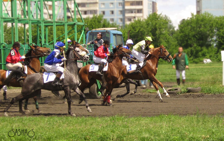 http://www.equestrian.ru/photos/user_photos/a_45fb84.jpg