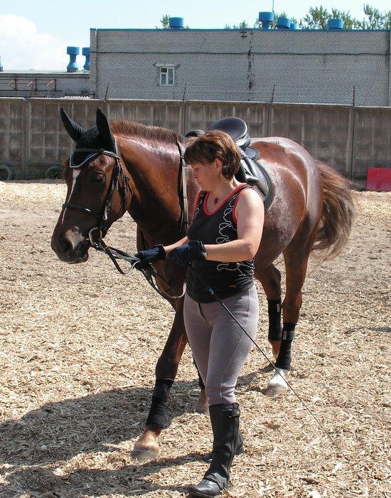 приемной никита сотсков конный спорт фото штатив требовал пять