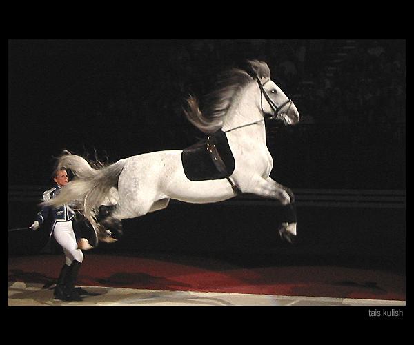 http://www.equestrian.ru/photos/user_photos/a_9842b1.jpg