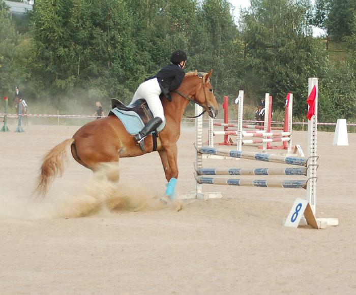 http://www.equestrian.ru/photos/user_photos/a_ac5ac2.jpg