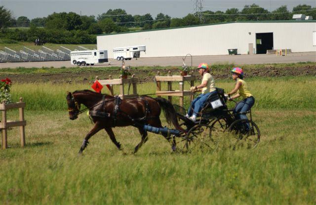 voice of america | Драйвинг 2006 | марафон - конь делает прибавку от ворот С к D, места много, бежим!